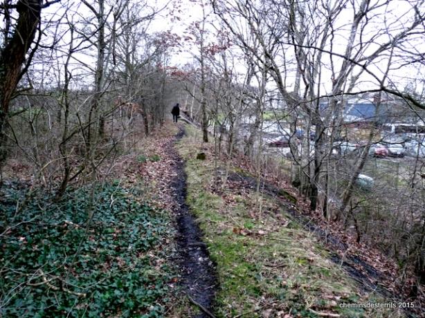 terril du Cerisier cheminement ferroviaire le long des terrains de foot067
